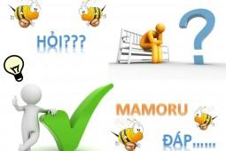 Mật ong Mamoru có chắc chắn là mật ong rừng tự nhiên thật không? 7