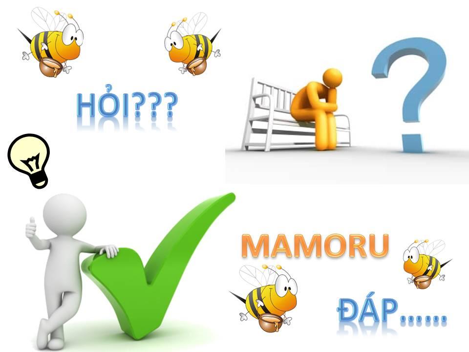 Mamoru bán loại Mật ong nào? - Mật ong Mamoru